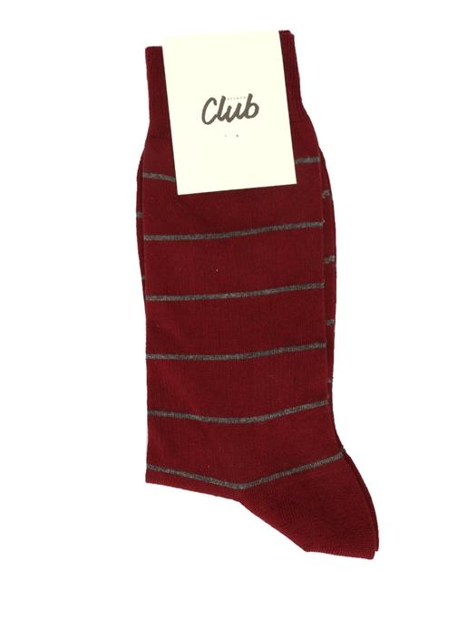 Bordo Çizgili Logolu Erkek Çorap
